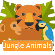 Animaux de la jungle
