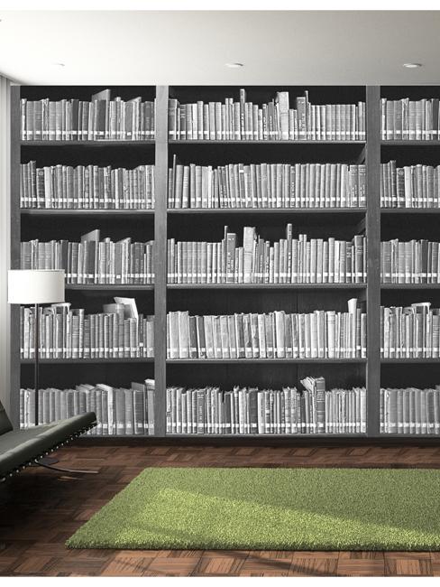 Bookshelf Wall Mural 232m x 315m
