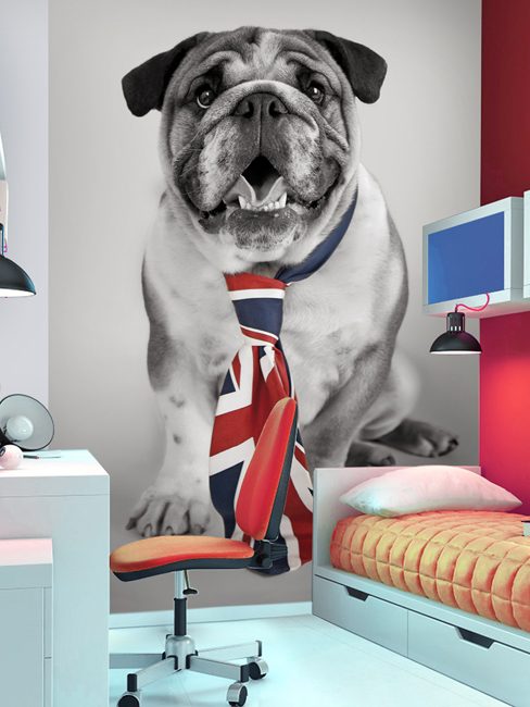 British Bulldog Union Jack Wall Mural 232m x 158m
