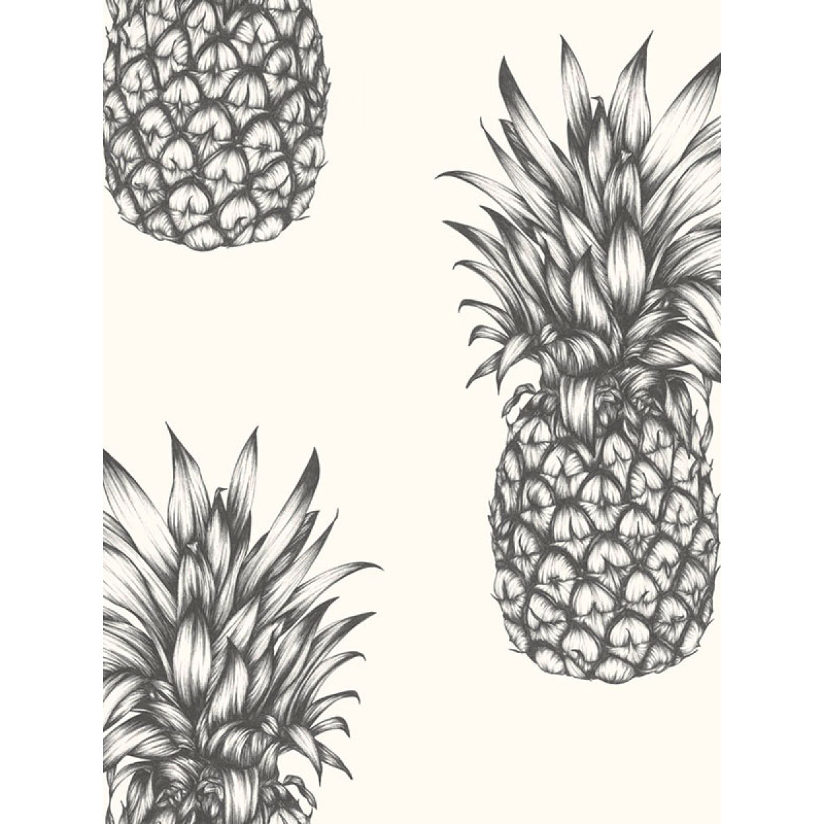 Tropics Copacabana Pineapple Wallpaper Black Amp White