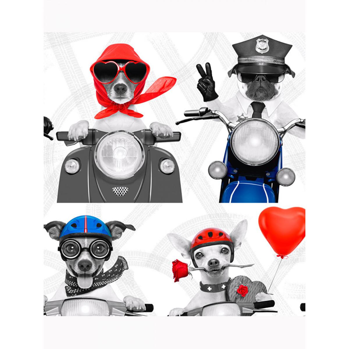 Newcastle United Bedroom Wallpaper Biker Dogs Wallpaper 102561 Muriva Feature Puppy