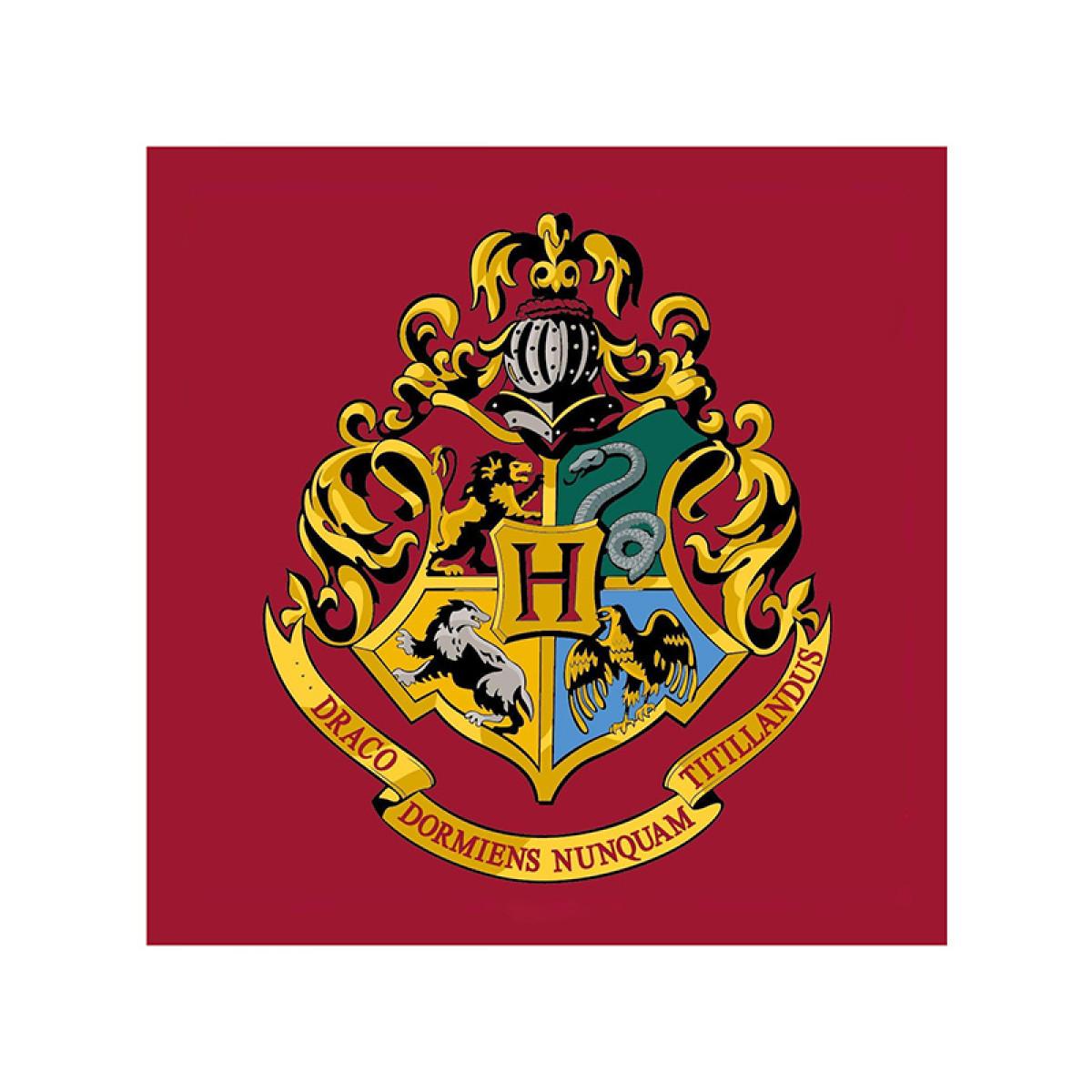 Harry Potter Emblem Square Rug Bedroom