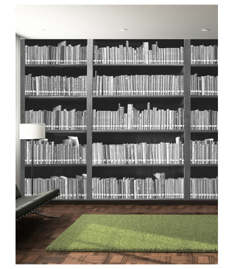 Bookshelf wall mural x for Bookshelf mural wallpaper