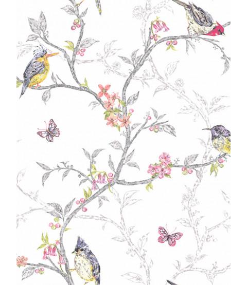 Fondo de pantalla de Phoebe Birds - Blanco - 98080