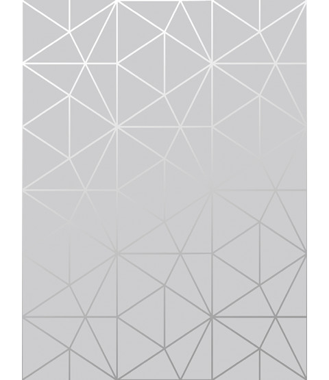 Metro Prism Geometric Triangle Wallpaper Grey and Silver WOW006