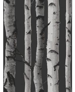 Birch Trees Wallpaper - Black and Silver - Fine Decor