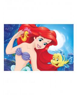 Disney Princess Ariel Floor Mat Rug 40cm x 60cm
