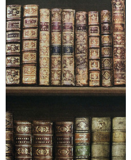 Papel tapiz de librería antiguo - Marrón - 575208