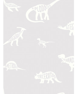 Papel Pintado Over the Rainbow Dino Dictionary Grey Holden 90900