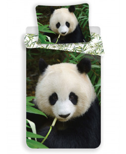 Panda Single Cotton Duvet Cover and Pillowcase Set