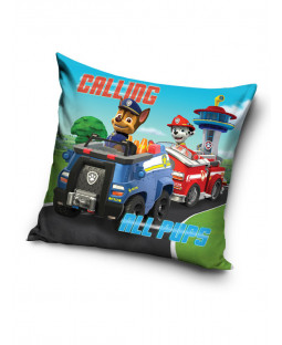 Paw Patrol Calling All Pups Cushion