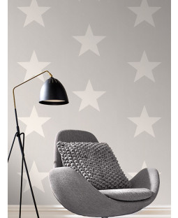 Rasch Star Wallpaper - White on Grey Feature Wall 248128