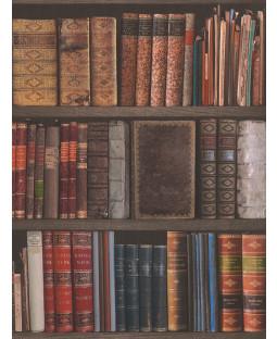 Rasch Library Books Wallpaper - 934809