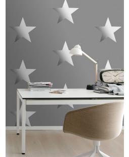 Metallic Stars Wallpaper Grey / Silver Rasch 248197