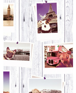 Selfie Dogs Landmark Wallpaper - Muriva 102558