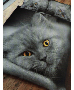 Grey Kitten Cat Double Duvet Cover and Pillowcase Set