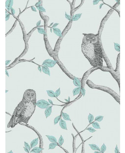 Woodland Owls Wallpaper - FD40638 - Teal
