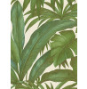 Versace Giungla Palm Leaves Wallpaper - Green and Cream - 10m x 70cm 96240-5