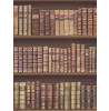 Antique Bookcase Wallpaper - 575208 Brown