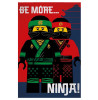 Lego Ninjago Film Ninja Fleece Blanket