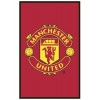 Manchester United FC £50 Bedroom Makeover Kit Floor Rug