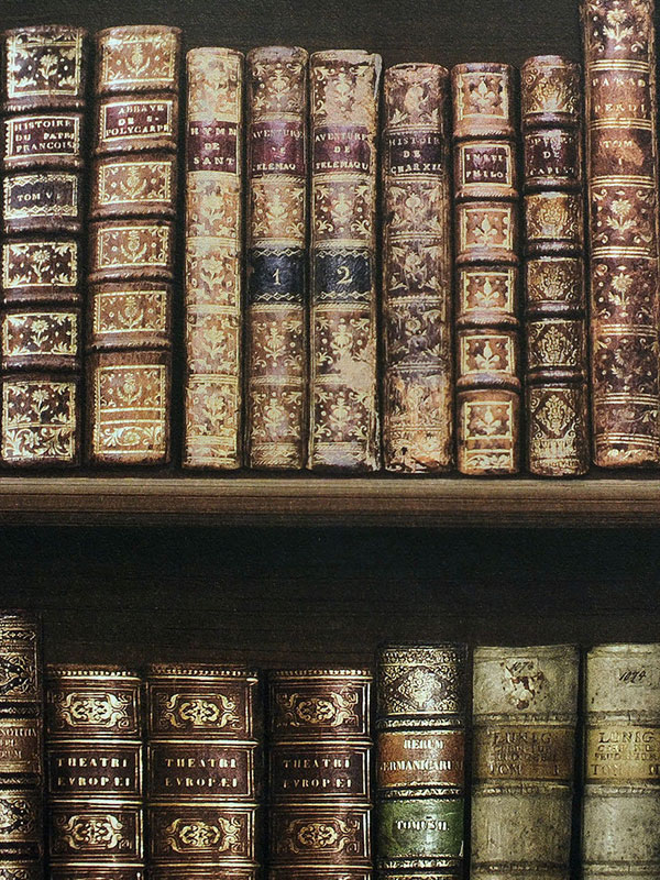 Antique Bookcase Wallpaper Brown 575208