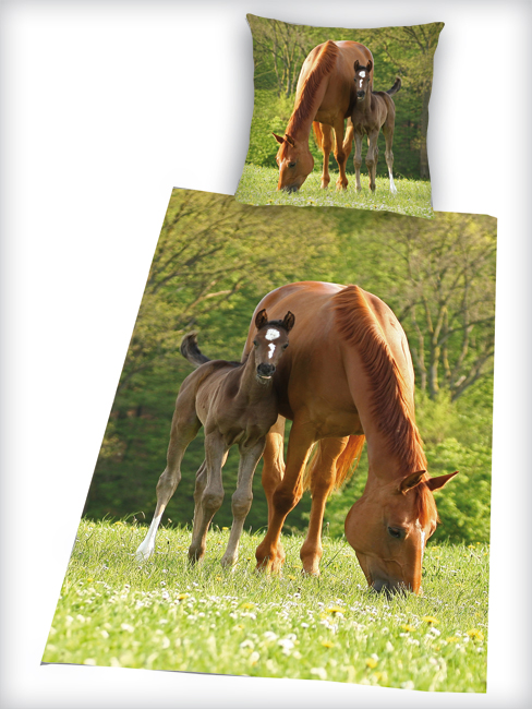 Horse and Foal Single Cotton Duvet Cover Set