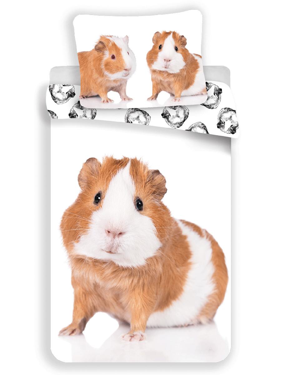 Guinea Pig Single Cotton Duvet Cover and Pillowcase Set