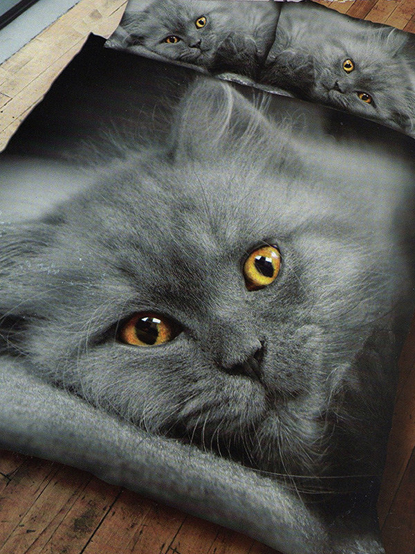 Grey Kitten Double Duvet Cover and Pillowcase Set